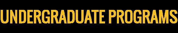 academic-banner-undergrad